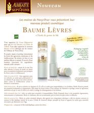 Flyer BAUME LEVRES